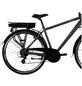 "ZÜNDAPP E-Bike Trekking »Z802«, 28"", 21-Gang, 10.4 Ah-Thumbnail"