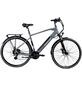 "ZÜNDAPP E-Bike Trekking »Z810«, 28"", 24-Gang, 11.6 Ah-Thumbnail"