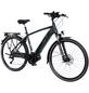 "FISCHER FAHRRAEDER E-Bike »Viator 4.0i Herren«, 28 "", 9-Gang, 8708 Ah-Thumbnail"