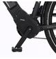 "FISCHER FAHRRAEDER E-Bike »VIATOR 5.0i«, 28"", 10-Gang, 11.6 Ah-Thumbnail"