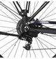 "FISCHER FAHRRAEDER E-Bike »VIATOR 5.0i«, 28"", 10-Gang, 11.6 Ah, Diamant-Thumbnail"