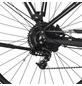 "FISCHER FAHRRAEDER E-Bike »VIATOR 5.0i«, 28"", 10-Gang, 11.6 Ah, Trapez-Thumbnail"