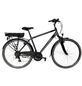 "TELEFUNKEN E-Bike »XT481 Exped.«, 28"", 21-Gang, 10 Ah-Thumbnail"