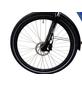 "LLOBE E-Bike »Yukon Lady«, 28"", 7-Gang, 13,2 Ah-Thumbnail"