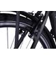 "LLOBE E-Citybike »Metropolitan Joy«, 28"", 3-Gang, 10 Ah-Thumbnail"