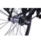 "LLOBE E-Citybike »Metropolitan Joy«, 28 "", 3-Gang, 13 Ah-Thumbnail"