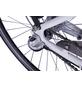 "LLOBE E-Citybike »Metropolitan Joy«, 28 "", 3-Gang, 8 Ah-Thumbnail"