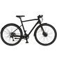 "PROPHETE E-Citybike »URBANICER City - 20.EMU.10«, 28 "", 8-Gang, 7 Ah-Thumbnail"