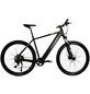 """HAWK E-Mountainbike »E-Mountain«, 29 """", 10-Gang, 13 Ah-Thumbnail"""
