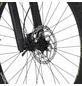"FISCHER FAHRRAEDER E-Mountainbike »MONTIS 6.0i«, 29 "", 12-Gang, 14 Ah-Thumbnail"
