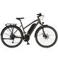 "PROPHETE E-Trekkingbike »Entdecker«, 28 "", 8-Gang, 10.4 Ah-Thumbnail"