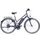 """FISCHER FAHRRAEDER E-Trekkingbike »ETD 1806«, 28"""", 8-Gang, 8.8 Ah-Thumbnail"""