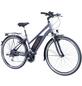 """FISCHER FAHRRAEDER E-Trekkingbike »ETD 1806«, 28 """", 8-Gang, 8.8 Ah-Thumbnail"""