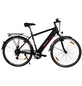 "MAXTRON E-Trekkingbike »MT-1«, 28"", 8-Gang, 11.6 Ah-Thumbnail"