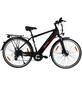 "MAXTRON E-Trekkingbike »MT-11«, 28"", 8-Gang, 11.6 Ah-Thumbnail"