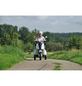 DIDI THURAU E-Trike 20 km/h-Thumbnail