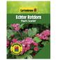 GARTENKRONE Echter Rotdorn, Crataegus laevigata »Pauls Scarlet«, rosa/pink, winterhart-Thumbnail