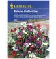 KIEPENKERL Edelwicken, Lathyrus odoratus, Samen, Blüte: mehrfarbig-Thumbnail