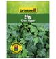 GARTENKRONE Efeu, Hedera helix »Green Ripple«, winterhart-Thumbnail