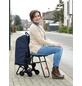 WENKO Einkaufstrolley, mit Sitz, Aluminium, silberfarben matt-Thumbnail