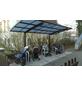 XIMAX Einzelcarport »Portoforte Mini«, Außenmaß BxT: 201 x 253,8 cm, bronzefarben-Thumbnail