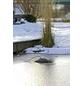 OASE Eisfreihalter »IceFree Thermo«, Edelstahl/Kunststoff, 330 W-Thumbnail