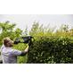 BOSCH HOME & GARDEN Elektro-Heckenschere »AdvancedHedgecut 70«, 500W, Schnittlänge: 70 cm-Thumbnail