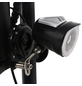 DIDI THURAU Elektrofaltroller »Eco Tourer Basic«, max. 45 km/h, Reichweite: 25 km, schwarz-Thumbnail