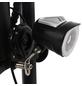 DIDI THURAU Elektrofaltroller »Eco Tourer Safety«, max. 45 km/h, Reichweite: 25 km, schwarz-Thumbnail