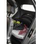 DIDI THURAU Elektroroller »eLizzy Comfort«, max. 25 km/h, Reichweite: 60 km, silberfarben-Thumbnail