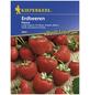 KIEPENKERL Erdbeere ananassa Fragaria »Fresca«-Thumbnail