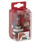 GO/ON! Ersatzlampenkoffer, H4, H4, P43t, P21W, R5W, T4W, 1 Stück-Thumbnail