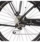 "FISCHER FAHRRAEDER Fahrrad »1861«, 28 "", 9-Gang, 11.6Ah-Thumbnail"
