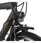 PROPHETE Fahrrad, 28 Zoll, Unisex-Thumbnail