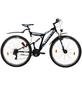 LEADER Fahrrad »Atlanta Street«, 28 Zoll, Herren-Thumbnail