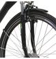 HAWK Fahrrad »City Wave«, 26 Zoll, Damen-Thumbnail