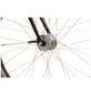 TRETWERK Fahrrad »Coolman 2.0 «, 28 Zoll-Thumbnail