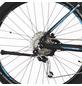 "FISCHER FAHRRAEDER Fahrrad »EM 1864«, 27,5 "", 9-Gang, 11.6Ah-Thumbnail"