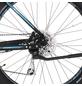 "FISCHER FAHRRAEDER Fahrrad »EM 1864«, Schwarz 27,5 "", 9-gang, 11.6ah-Thumbnail"