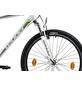 LEADER Fahrrad »Leader Action 1.0«, 26 Zoll, Herren-Thumbnail