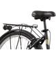 LEADER Fahrrad »Leader Madeira«, 28 Zoll, Damen-Thumbnail