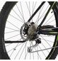 """FISCHER FAHRRAEDER Fahrrad Schwarz 29 """", 9-gang, 11.6ah-Thumbnail"""