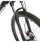HAWK Fahrrad »Thirtythree «, 29 Zoll-Thumbnail
