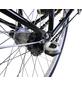 CHALLENGE Fahrrad »Tourenbike«, 28 Zoll, Damen-Thumbnail