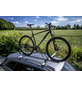 EUFAB Fahrradträgeraufsatz, Länge: 145 cm, Stahl-Thumbnail