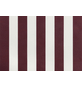 GO/ON! Fallarmmarkise, BxT: 250 x 150 cm, bordeauxrot/weiss gestreift-Thumbnail