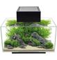 FLUVAL FL Edge 2.0 Aquarium Set-Thumbnail