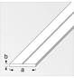 alfer® aluminium Flachstange »Combitech®«, BxL: 29,5 x 1000 mm, silberfarben-Thumbnail