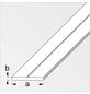 alfer® aluminium Flachstange »Combitech®«, BxL: 35,5 x 1000 mm, silberfarben-Thumbnail