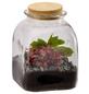 flowerbox Flowerbox Terrarium Autonome Cobane M-Thumbnail